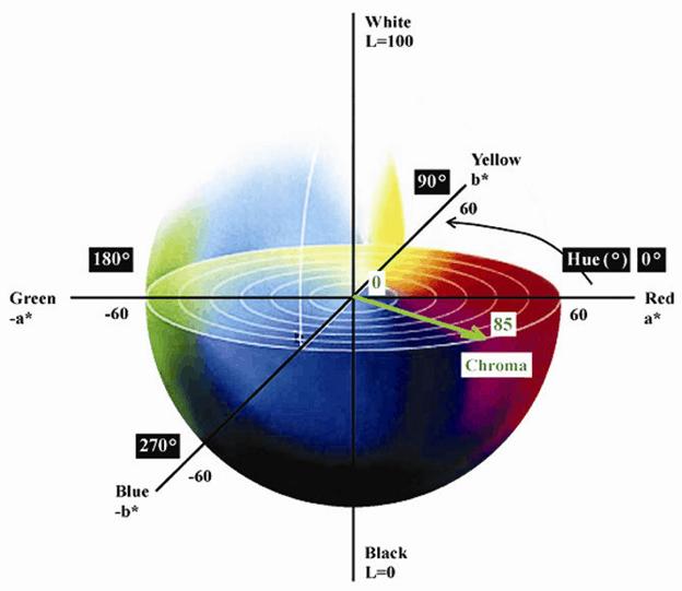 ทฤษฏีสีแสง (Light Color)